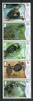 British Virgin Islands BVI Turtles Stamps 2017 MNH Underwater Life Pt 1 5v Strip