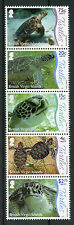 British Virgin Islands BVI 2017 MNH Underwater Life Pt 1 Turtles 5v Strip Stamps