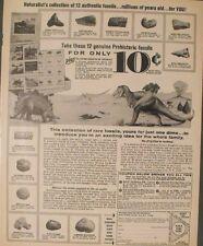 4WF69B USED 1969 JOHNSON 383865 SEA HORSE 4HP PARTS CATALOG MODELS 4W69B 4R 69B