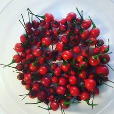 Aji Charapita rot Samen wilder Chili aus Peru teuerste Chili der Welt