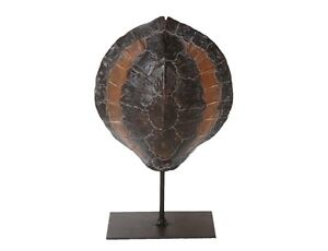 NEW 27cm Tall Magnificent Tortoise Shell on a metallic Stand