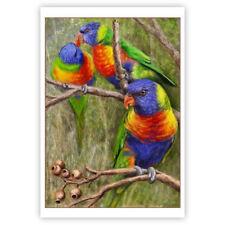 © ART - NEW Rainbow Lorrikeet Parrot Australian Bird Original artist print by Di
