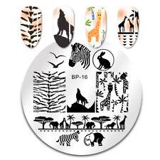 BORN PRETTY Nail Art Stamping Plate Zebra Wolf Animal Image Template #16