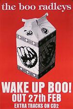 The Boo Radleys 1995 Wake Up Boo! Promo Poster Original