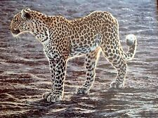Alan Hunt, Okavango Apparition, Rare Limited Canvas Edition, Only 125 Edition Si