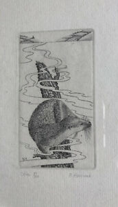 BRIAN HANSCOMBE RE b1944 Framed Limited Edition ENGRAVING Otter 51/100