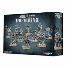 Space Wolves Pack Warhammer 40K 10 Marines Wolf Guard Grey Hunters Bloodclaws