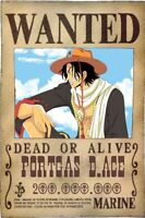 Poster one piece Cindy D.Ace D Size Wanted Anime Manga Luffy Rubber #2