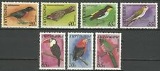 Suriname Oiseaux Toucan Engoulevent Colibri Nightjar Birds Tangaren Vogel **1977
