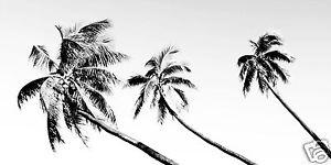 Tropical Palm Tree Island Art Painting Canvas print poster signed COA Australia