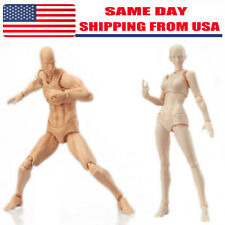 S.H.Figuarts Figma CHAN & KUN Male Female PVC Movable Figure Body Model Toy Hold