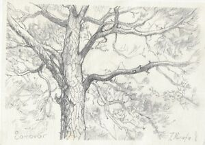 original drawing A4 73MT art samovar modern Graphite sketch landscape tree