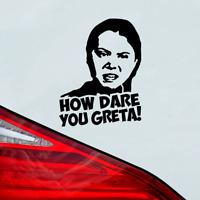 Greta Aufkleber HOW DARE YOU GRETA! CO2&Klimawahn - Wie kannst du es wagen!