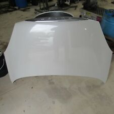 2002-2007 Buick Rendezvous Hood Off-White ? OEM 38537