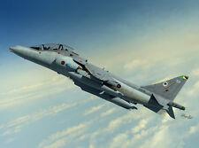 Sword 1/72 BAe Harrier T.10/12 # 72099