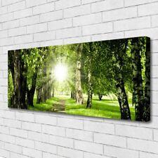 Leinwand-Bilder Wandbild Canvas Kunstdruck 125x50 Wald Sonne Fußpfad Natur