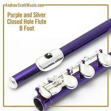 Flute - Purple and Silver with B Footjoint - Masterpiece - 12 Month Warranty