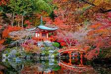 STUNNING JAPANESE GARDEN LANDSCAPE A1 CANVAS #286 AUTUMN GARDEN BRIDGE WALL ART