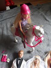 8x Barbie, 2x Ken und 1 Barbie-Pferd