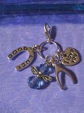 Qualcosa Blu Buona Fortuna ANGELO FERRO DI CAVALLO in blu un Wishbone e ti amo CHARM
