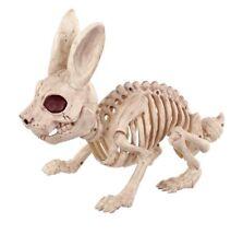 The Bone Yard  BUNNY SKELETON Halloween PARTY Decor RABBIT BONES