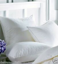 (2) Queen Feather Pillows - Custom Made In Our Shop!