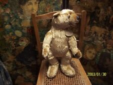 A aurora bear. Top quality bear.....hand crafted.