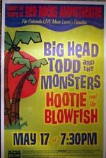 BIG HEAD TODD HOOTIE BLOWFISH BIG HEAD TODD RED ROCKS CONCERT  POSTER