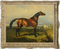 Hand painted Old Master-art Antique Oil painting Animal Portrait horse on canvas