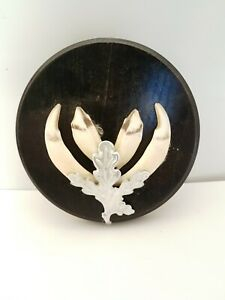 Taxidermy Wild Boar Tusks On Round Shield. Shield Is 12 cm Across. #7