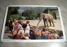 "Schulwandkarte "" Elefant im Zoo "" Der Neue Schulmann Kosmos Wandbild 4370 Schule"