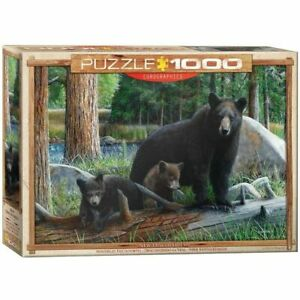 Eurographics 1000 Piece Jigsaw Puzzle - New Discoveries EG60000793
