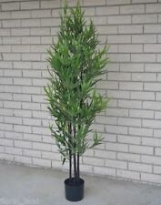Potted Trees Décor