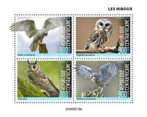 Central African Rep Birds on Stamps 2020 MNH Owls Little Snowy Owl 4v M/S