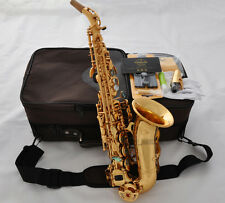 Professional TAISHAN Gold Curved Soprano sax Saxophone Abalone Bb high F# W/case