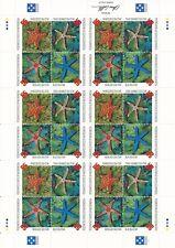 Stamp Micronesia Sc 240 Sheet 1996 Starfish Sea Star Necklace Rhinoceros MNH