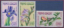 1965 MAROC N°480/482** Fleurs : Iris Glaïeuls Câprier, 1965 MOROCCO Flowers MNH