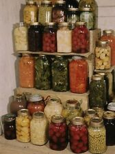 CANNING food PRESERVING 117 old books how putting by SURVIVAL SKILLS dehydrating