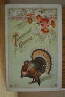 C 1912 Turkey & Red Flowers Thanksgiving Greetings P. Sander Embossed Postcard