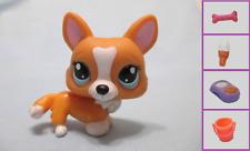 Littlest Pet Shop Dog Corgi Tan 1360 and Free Accessory Authentic Lps