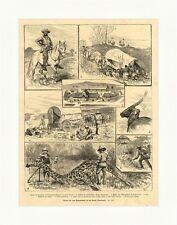 Skizzen aus dem Bechuanaland britische Kolonie Südafrika Tiere Holzstich E 4005