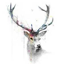 VeeBee Stag in watercolour . signed limited edition print