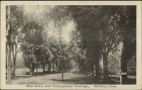 Salisbury CT Main St. Near Cong Parsonage c1915 Postcard