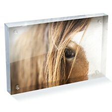 """Awesome Clydesdale Horse  Photo Block 6 x 4"""" - Desk Art Office Gift #12392"""