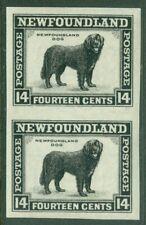 EDW1949SELL : NEWFOUNDLAND 1932-37 Sc #194 Imperf pair VF, Mint OG VLH Cat $120