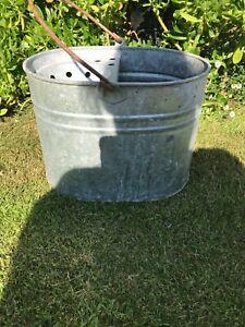 old galvanised mop bucket/planter