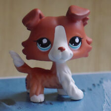 "Littlest pet shop Lps Mini 3"" Figure Coofee Brown Collie Dog pubby#1542"