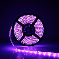 10M 32.8Ft 3528 SMD Flexible Waterproof 300 LED Strip Light Purple DC12V DIY