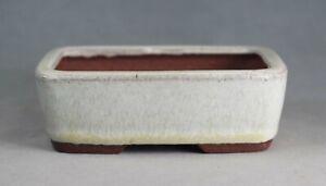 Tokoname Rect. Bonsai Pot by Eimei (Yozan kiln), #42T12W : 110*83*H37mm