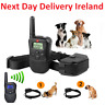 300M Rechargeable Electric Shock Collar Dog Training Remote Control Anti Barking